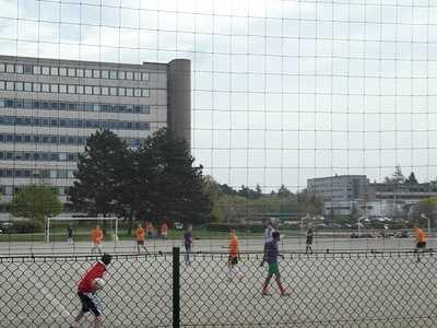 Le sport à Rennes1
